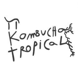 π Kombucha tropical